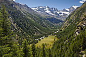 Valnontey valley, Gran Paradiso National Park, Aosta Valley, Italy