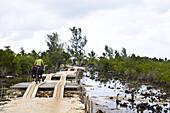 Woman cycling over a wooden bridge, Masoala National Park, Madagascar