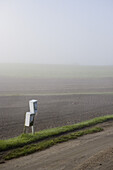Mailboxes in front of a foggy field