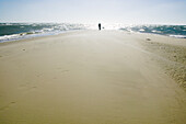 Man stands on beach, The farthest headland where Skagerrak and the Kattegatt meet, Skagen, Jutland, Denmark