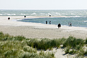 People are walking on beach, the farthest headland where Skagerrak and the Kattegatt meet, Skagen, Jutland, Denmark