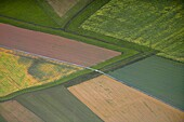 Agricultural landscape in Bohuslan, Sweden