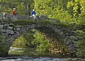 Boy fishing from bridge