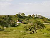 House in agriculture landscape, osterlen, Skane, Sweden