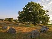 Prehistoric graveyard, Karlskrona, Sweden, Karlskrona, Blekinge, Sweden