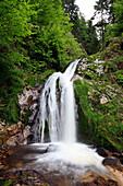 Allerheiligen waterfall amidst trees, Black Forest, Baden-Württemberg, Germany, Europe