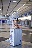 Teddy bear on a suitcase, Munich airport, Bavaria, Germany