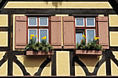 Windows of a half-timbered house, Dinkelbuehl, Bavaria, Germany