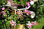 Bike decorated with flowers at a picnic area, Altmuehltal cycle trail, Frankenhoehe nature park, Jochsberg, Bavaria, Germany