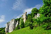 Rock formation, Altmuehltal cycle trail, Altmuehl valley nature park, Altmuehl, Dollnstein, Eichstaett, Bavaria, Germany