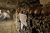 Skulls and bones in the catacombs of Paris, Les Catacombes de Paris, Paris, France, Europe