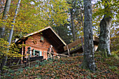 Older man in front of an alpine hut in a deciduous forest, Upper Bavaria, Germany