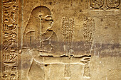 Relief of an offering in the temple of Horus, Temple of Edfu, Edfu, Egypt, Africa
