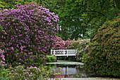 Landscape garden, Lutetsburg castle, Lutetsburg, Lower Saxony, Germany