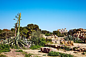 Juno Temple, Valley of temples, Agrigento, Sicily, Italy