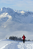 Woman backcountry skiing, ascending a mountain, Bavarian Alps and Rofan mountain range in the background, Rotwand, Spitzing area, Bavarian Per-Alps, Bavarian Alps, Upper Bavaria, Bavaria, Germany
