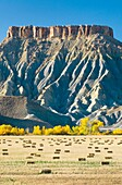 Hay bales in Fremont River valley Utah