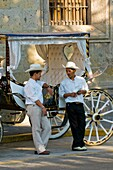 Calandrias horse drawn carriages and their drivers, on Avenida Corona in the historic Center of Guadalajara, Jalisco, Mexico