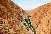 Maroc, Haut-Atlas, la vallée et les gorges du Dadès, dites vallée des Kasbah