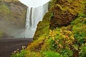 Iceland, Landscape, Landscapes, nature, Power, River, scenic, Scenic, Scenics, Selfoss, Skogafoss, Waterfall, S19-922356, agefotostock