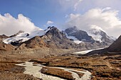 Mount Athabasca and the Athabasca Glacier in the Columbia Icefield  Jasper National Park, Rocky Mountains, Alberta, Canada