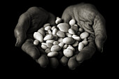 Hands that offer white stones, polished  Means the whisper of water  Conceptual  Black and white