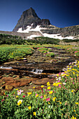 Water cascades down from Reynold Mountain at Logan Pass in Glacier National Park Montana