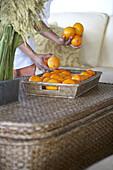 Oranges in the basket at Hotel Villa Joya, Albufeira, Portugal