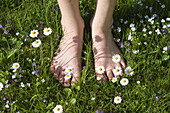 Child's feet in a meadow full of daisies, Bavaria, Germany