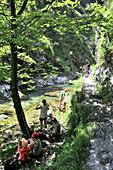 Hikers having a rest, Weissbach gorge near Bad Reichenhall, Berchtesgadener Land, Upper Bavaria, Bavaria, Germany