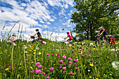 Cycling tour, Isar Cycle Route, Konigsdorf, Upper Bavaria, Germany