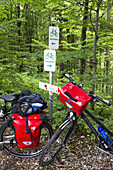 Bicycles on forest trails, Isar Cycle Route, Strasslach-Dingharting, Upper Bavaria, Germany