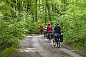 Cycling tour, Isar Cycle Route, Grunwald, Upper Bavaria, Germany