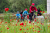 Cyclists passing Isar Cycle Route, nwar Ismaning, Upper Bavaria, Germany