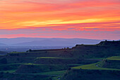 View over vineyards tot Vosges Mountains in sunset, Kaiserstuhl, Baden-Wurttemberg, Germany