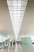 Barcelona´s new airport terminal T1 El Prat de Llobregat, Barcelona, Catalonia, Spain