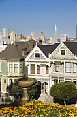 Usa, California, San Francisco, Alamo Square, Victorian Houses