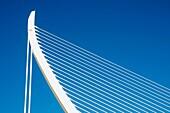 L´Assut d´Or bridge, City of Arts and Sciences. Valencia, Comunidad Valenciana, Spain.
