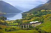 Great Britain, Scotland, The Jacobite Steam Train, better known now as the Harry Potter Train, crossing the viaduct of Glenfinnan with loch Shiel in the background