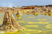 Ethiopia, Afar region, Danakil depression, Dallol, Sulfuric acid pond and fumaroles  Dallol is a volcanic explosion crater which was formed during a phreatic eruption in 1926, This crater and other similar ones nearby are the lowest known subaerial volcan