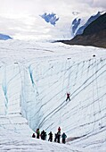 Kennicott, Alaska - An ice climbing class on the Root Glacier in Wrangell-St  Elias National Park  © Jim West