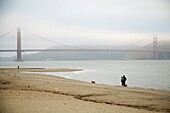 San Francisco, California - A couple walks with their dogs on the beach near the Golden Gate Bridge  © Jim West