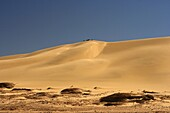 People sitting on a sand dune, In-Akachaker  Tassili Ahaggar  Sahara desert  Algeria