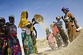 Group of women winnowing millet  Takorka  Niger