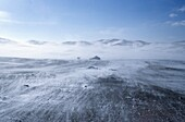 severe winter conditions in mongolia  The population lives very remote and under hard circumstances  they survive from animals such as sheep, cows and horses  In the summer they live from the milk, in the winter from dried meat  Gobbi dessert, Mongolia