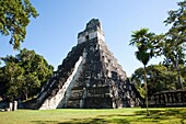 Temple I, Temple of the Great Jaguar construction at Tikal Archaeological Site  Guatemala