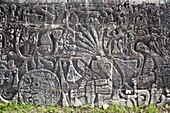 Relief on a slope of the court of the Ball Game at Chichen Itza  It shows a sculpted, kneeling figure decapitated, and from the neck the blood spurs in form of serpents adorned with plants  The Ball Court of Chichen Itza  Chichen Itza Archaeological Site