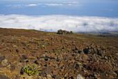 View from Haleakala volcano in the morning, Leleiwi Overlook, Maui, Hawaii, USA, America