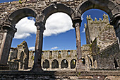 View of cloister of the Jerpoint Abbey, Kilkenny, County Kilkenny, Ireland