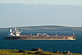 SCAPA FLOW ORKNEY Supertanker anchored in Scapa Flow off Orphir shore cottages